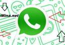 Las novedades que te trae WhatsApp: nuevas pegatinas y búsqueda inversa de imágenes